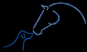 Logo Tierphysiotherapie Katharina Ludwig zeigt ein Skizze eines Pferdes und Hundes, die sich gegenüberstehen