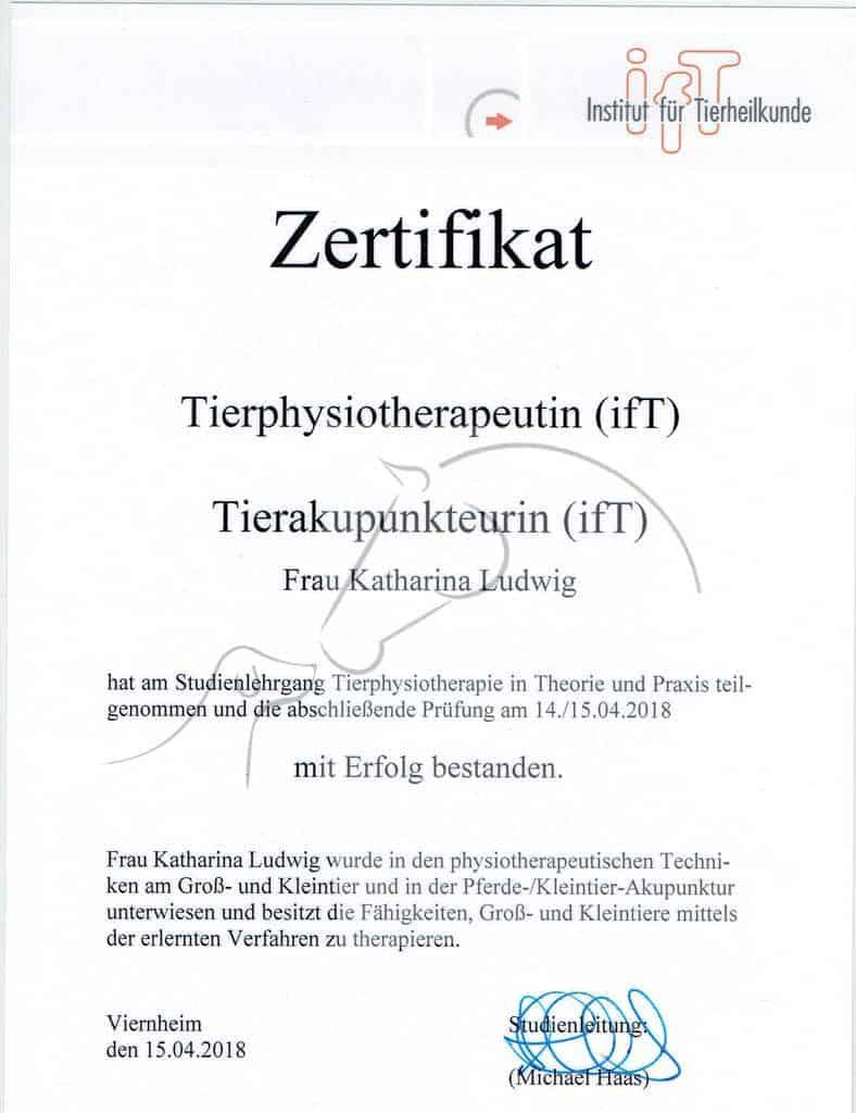 Zertifikat Institut für Tierheilkunde Tierphysiotherapeutin und Tierakupunkteurin